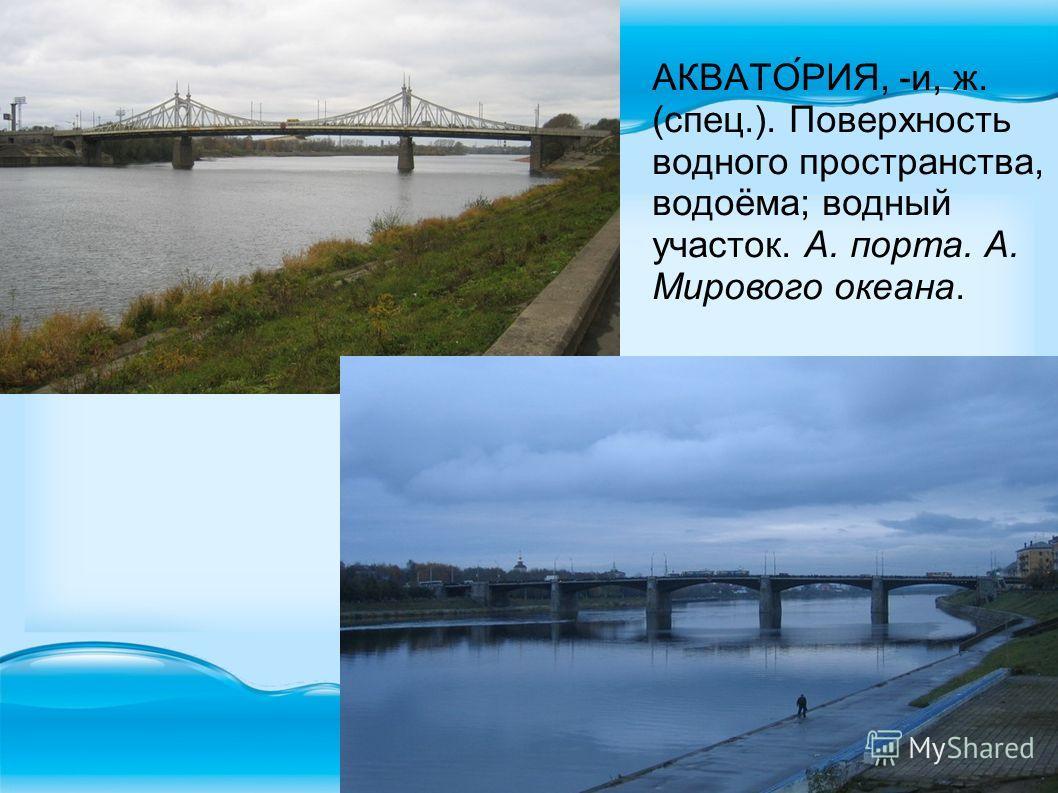 АКВАТО́РИЯ, -и, ж. (спец.). Поверхность водного пространства, водоёма; водный участок. А. порта. А. Мирового океана.