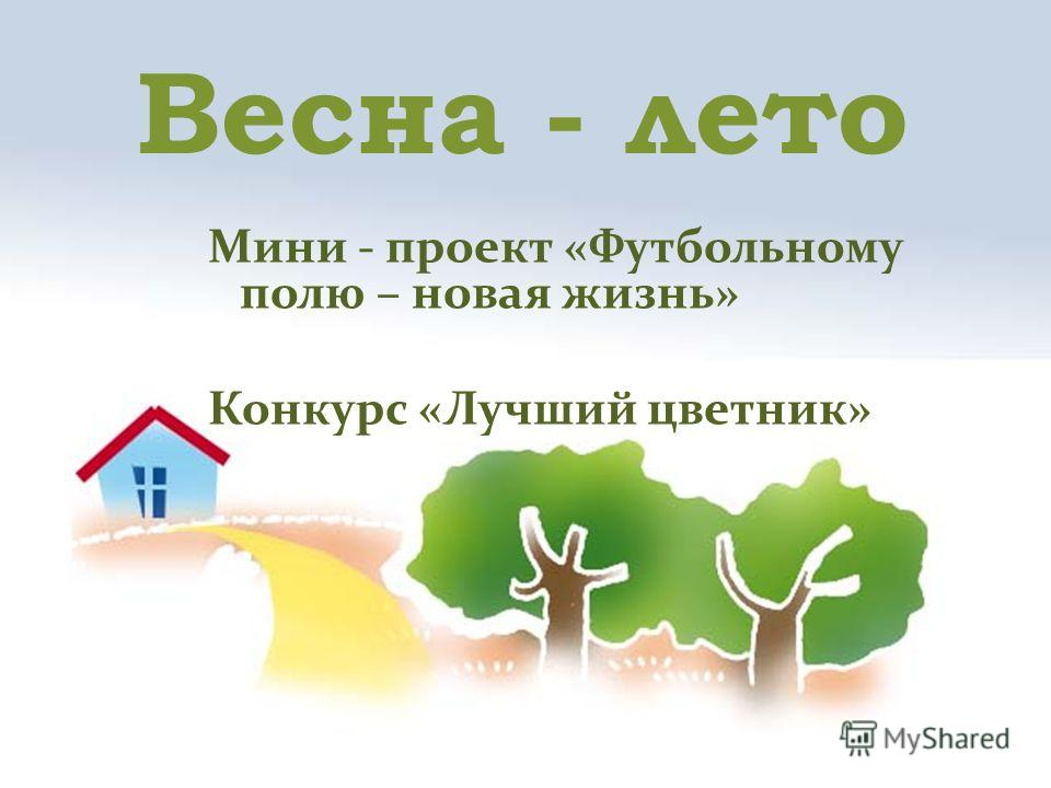 Весна - лето Мини - проект «Футбольному полю – новая жизнь» Конкурс «Лучший цветник»
