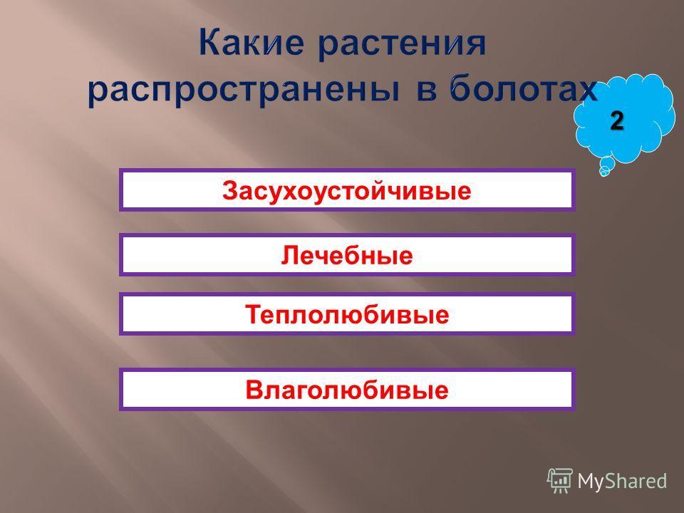 Магелланов Дрейка Берингов Девисов 2