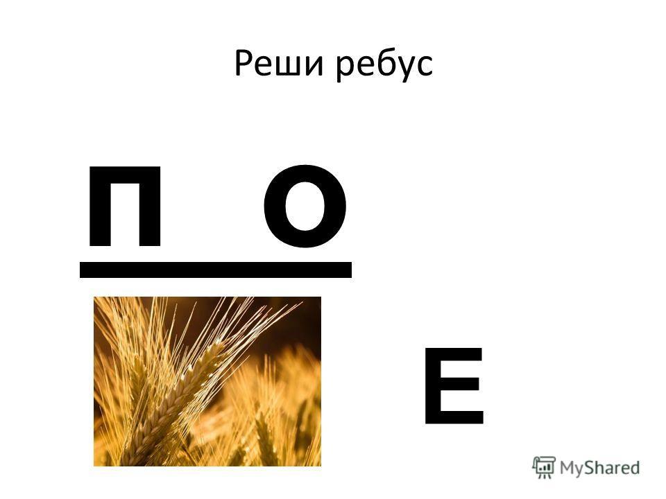 Реши ребус п о Е