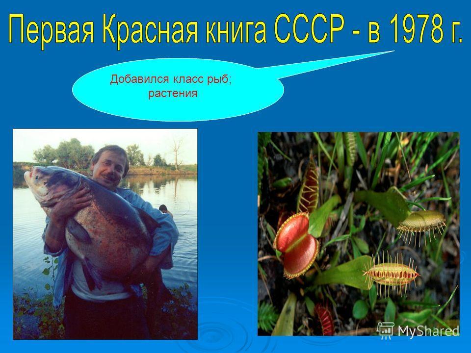 Добавился класс рыб; растения