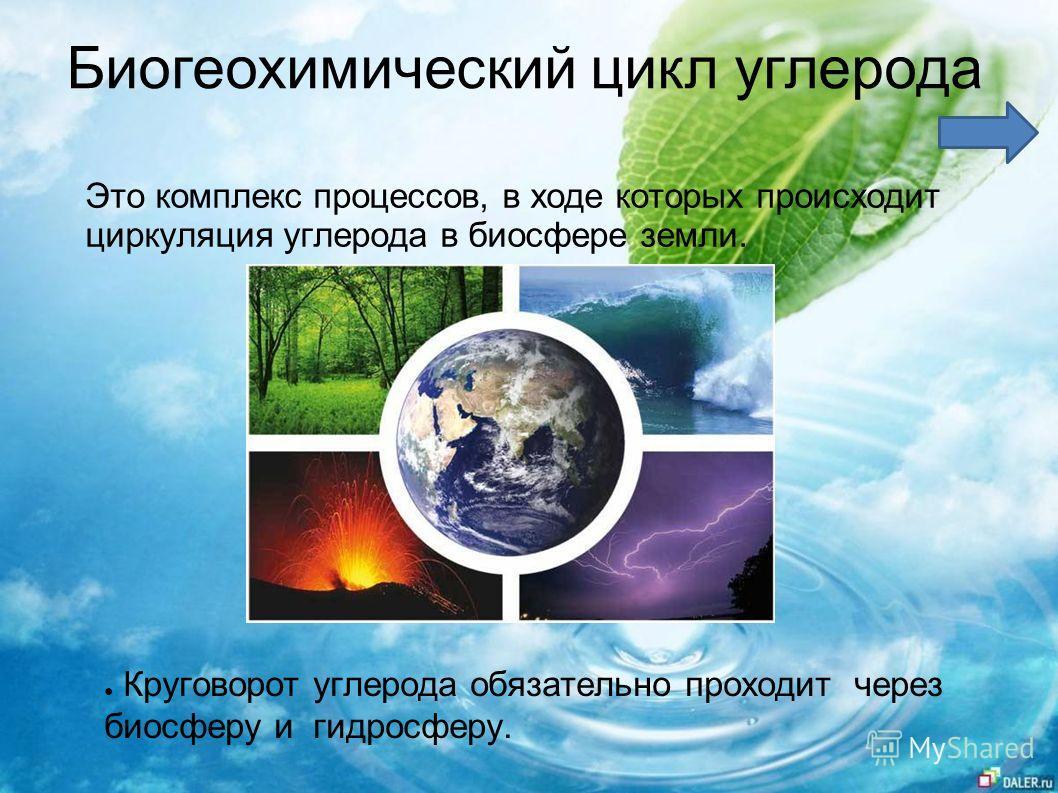 Биогеохимический цикл углерода Круговорот углерода обязательно проходит через биосферу и гидросферу. Это комплекс процессов, в ходе которых происходит циркуляция углерода в биосфере земли.
