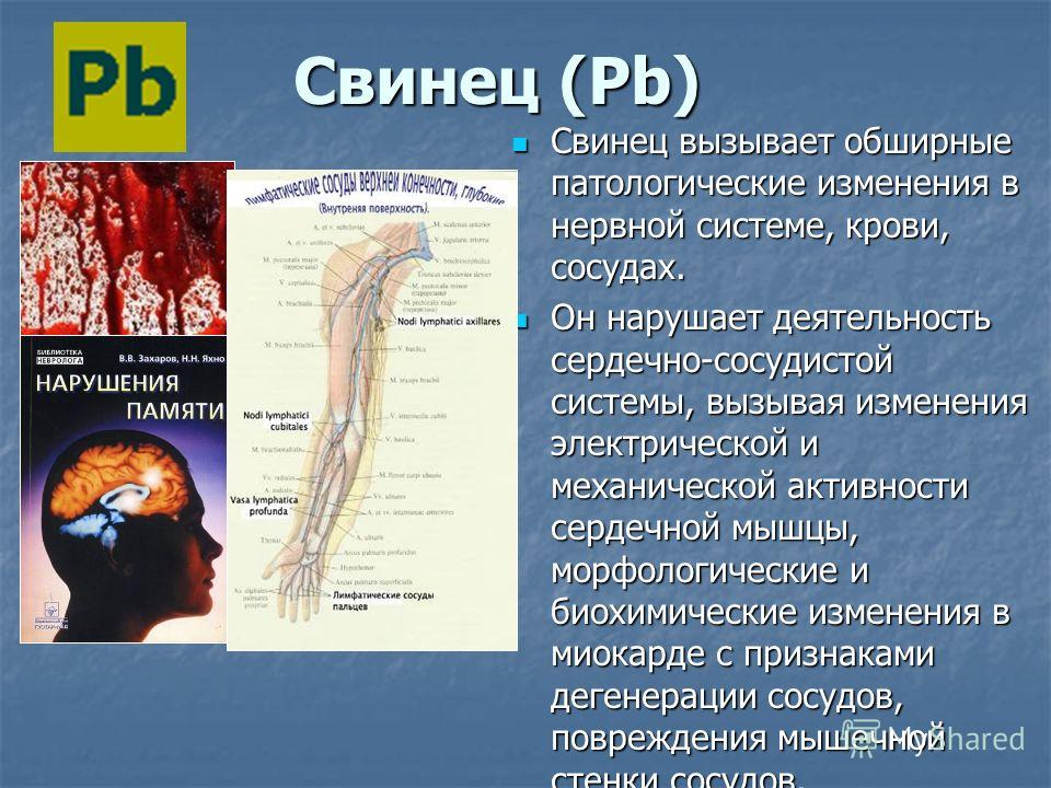 С Свинец (Pb) Свинец вызывает обширные патологические изменения в нервной системе, крови, сосудах. Он нарушает деятельность сердечно-сосудистой системы, вызывая изменения электрической и механической активности сердечной мышцы, морфологические и биох