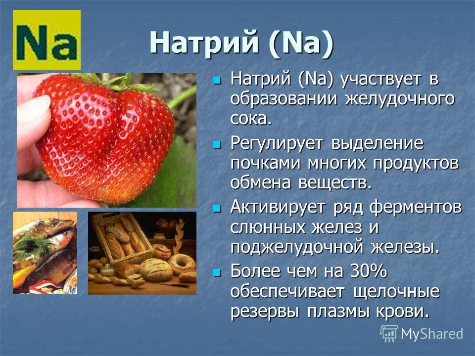 Натрий (Na) Натрий (Na) участвует в образовании желудочного сока. Регулирует выделение почками многих продуктов обмена веществ. Активирует ряд ферментов слюнных желез и поджелудочной железы. Более чем на 30% обеспечивает щелочные резервы плазмы крови