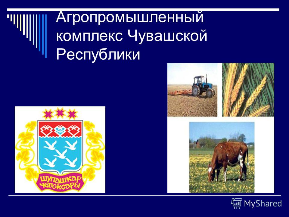 Агропромышленный комплекс Чувашской Республики