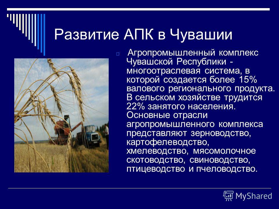 Развитие АПК в Чувашии Агропромышленный комплекс Чувашской Республики - многоотраслевая система, в которой создается более 15% валового регионального продукта. В сельском хозяйстве трудится 22% занятого населения. Основные отрасли агропромышленного к