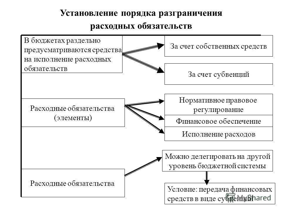 8 Установление порядка разграничения расходных обязательств В бюджетах раздельно предусматриваются средства на исполнение расходных обязательств Расходные обязательства (элементы) Расходные обязательства За счет собственных средств За счет субвенций