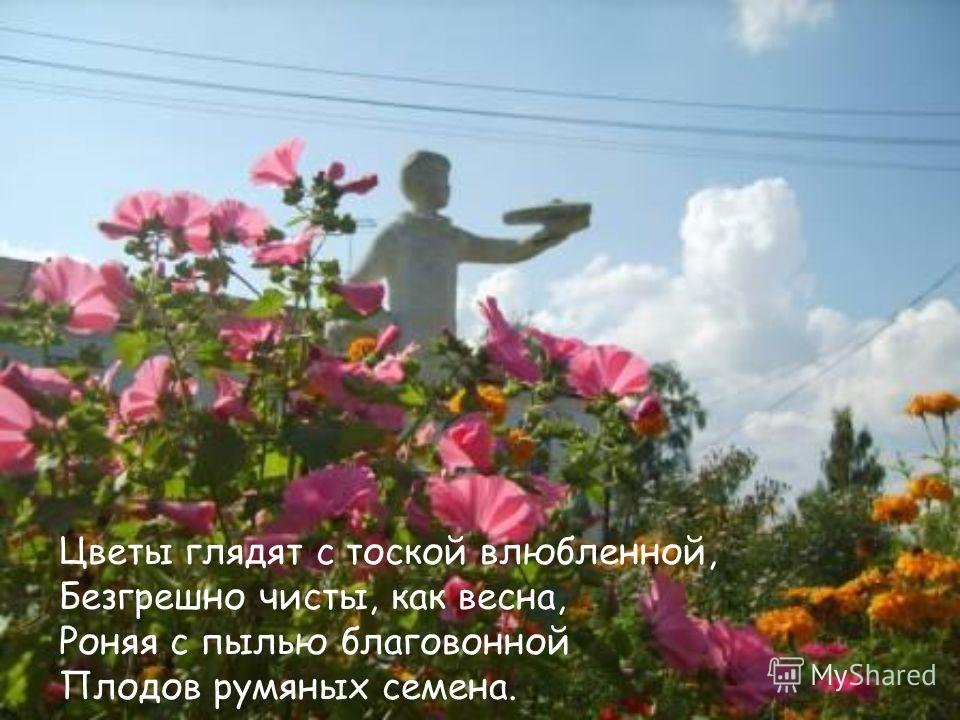 Цветы глядят с тоской влюбленной, Безгрешно чисты, как весна, Роняя с пылью благовонной Плодов румяных семена.