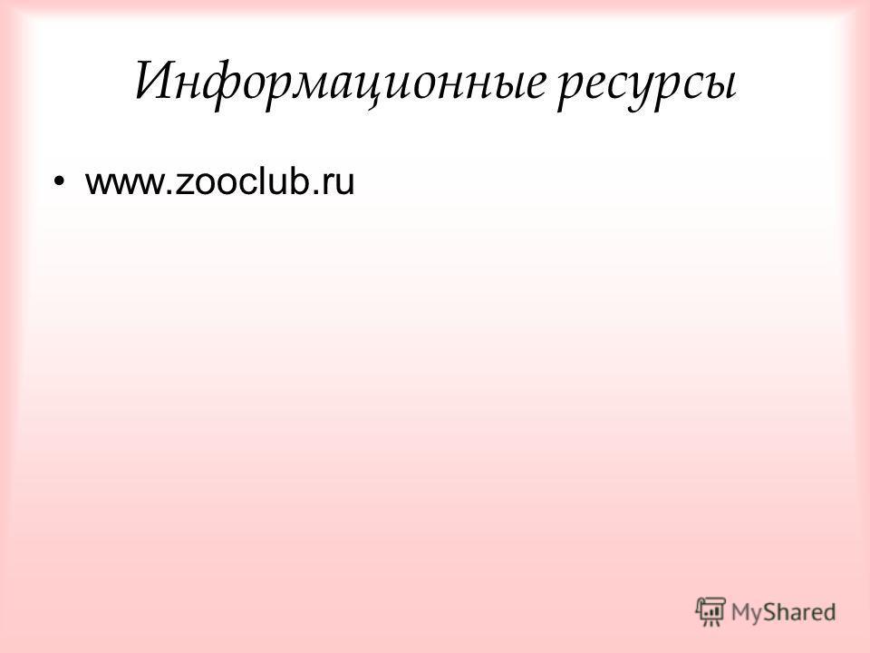 Информационные ресурсы www.zooclub.ru