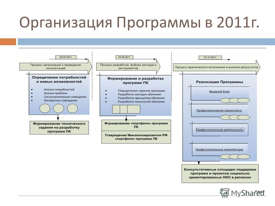 Организация Программы в 2011 г.