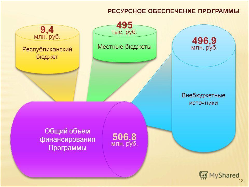 РЕСУРСНОЕ ОБЕСПЕЧЕНИЕ ПРОГРАММЫ Республиканский бюджет Местные бюджеты Внебюджетные источники 9,4 млн. руб. 495 тыс. руб. 496,9 млн. руб. Общий объем финансирования Программы 506,8 млн. руб. 12
