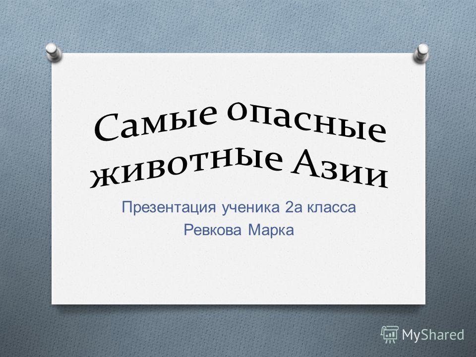 Презентация ученика 2 а класса Ревкова Марка
