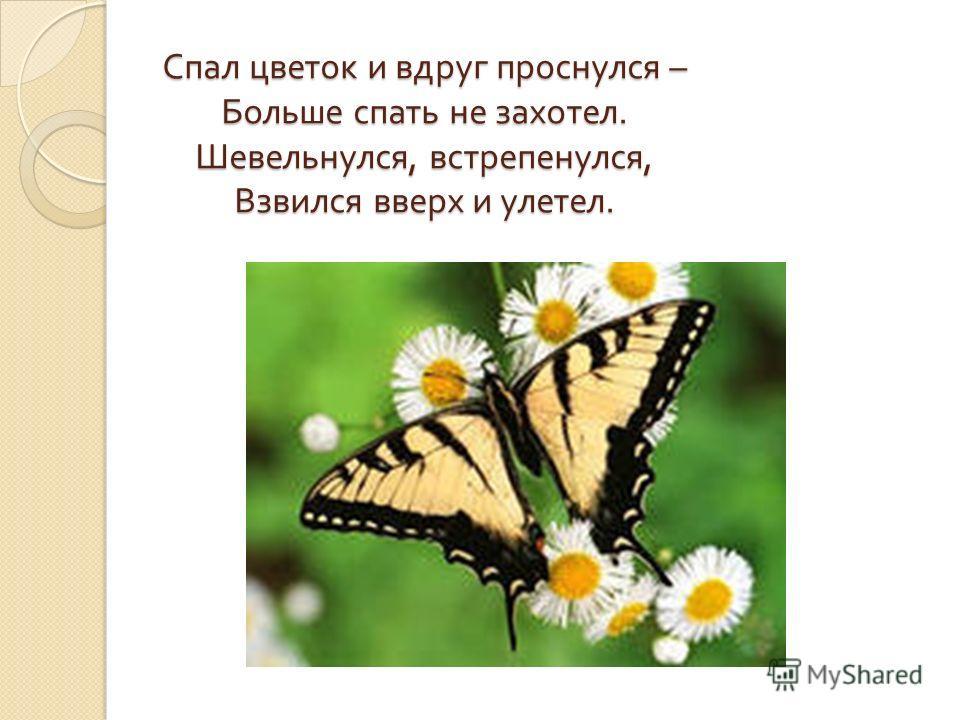 Спал цветок и вдруг проснулся – Больше спать не захотел. Шевельнулся, встрепенулся, Взвился вверх и улетел.