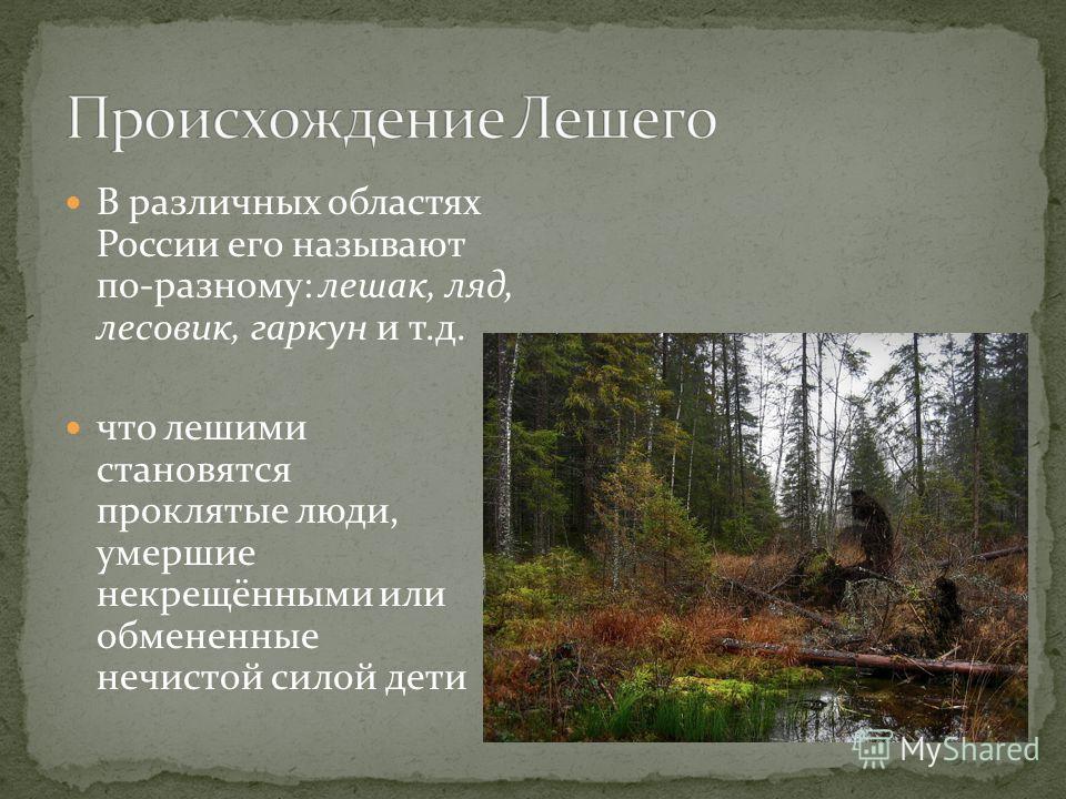 В различных областях России его называют по-разному: лешак, ляд, лесовик, гаркун и т.д. что лешими становятся проклятые люди, умершие некрещёнными или обмененные нечистой силой дети