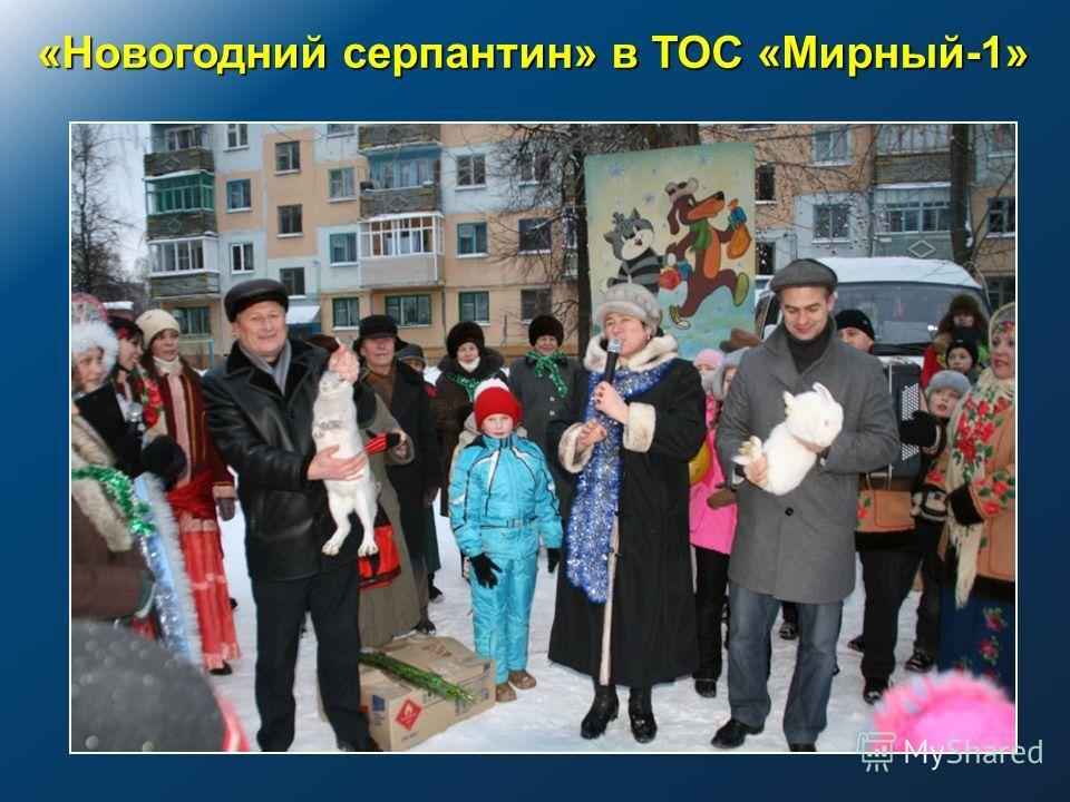 «Новогодний серпантин» в ТОС «Мирный-1»