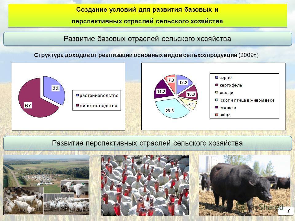 Создание условий для развития базовых и перспективных отраслей сельского хозяйства Создание условий для развития базовых и перспективных отраслей сельского хозяйства Развитие базовых отраслей сельского хозяйства Развитие перспективных отраслей сельск