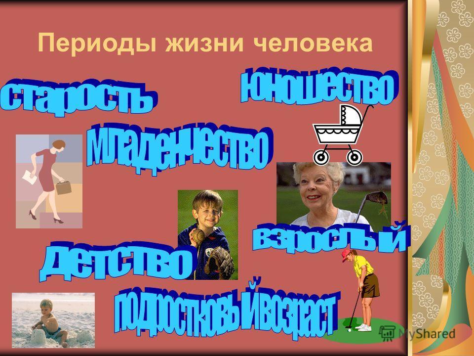 Особый возраст: отрочество Выполнила: Михайлова Алина Ученица 6 класса