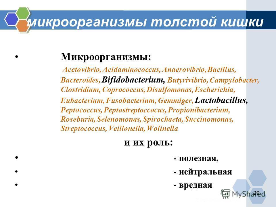 29 микроорганизмы толстой кишки Микроорганизмы: Acetovibrio, Acidaminococcus, Anaerovibrio, Bacillus, Bacteroides, Bifidobacterium, Butyrivibrio, Campylobacter, Clostridium, Coprococcus, Disulfomonas, Escherichia, Eubacterium, Fusobacterium, Gemmiger
