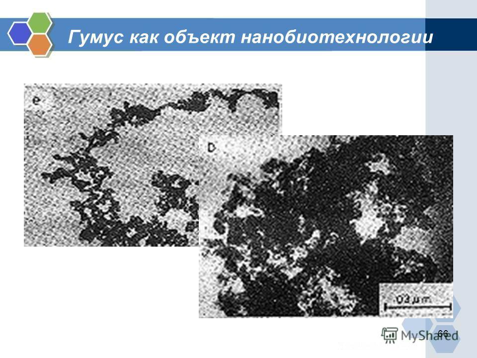 66 Гумус как объект нанобиотехнологии