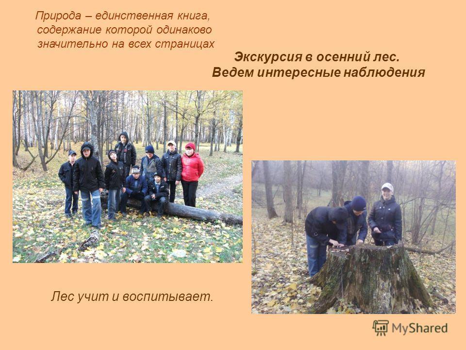Лес учит и воспитывает. Природа – единственная книга, содержание которой одинаково значительно на всех страницах Экскурсия в осенний лес. Ведем интересные наблюдения