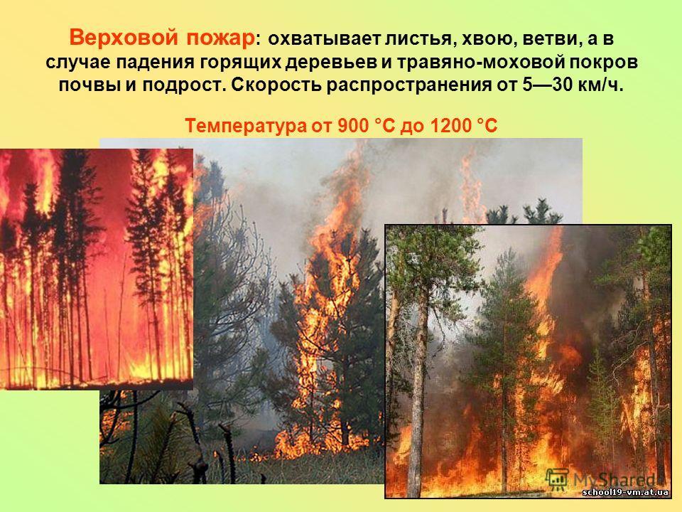 Верховой пожар : охватывает листья, хвою, ветви, а в случае падения горящих деревьев и травяно-моховой покров почвы и подрост. Скорость распространения от 530 км/ч. Температура от 900 °C до 1200 °C