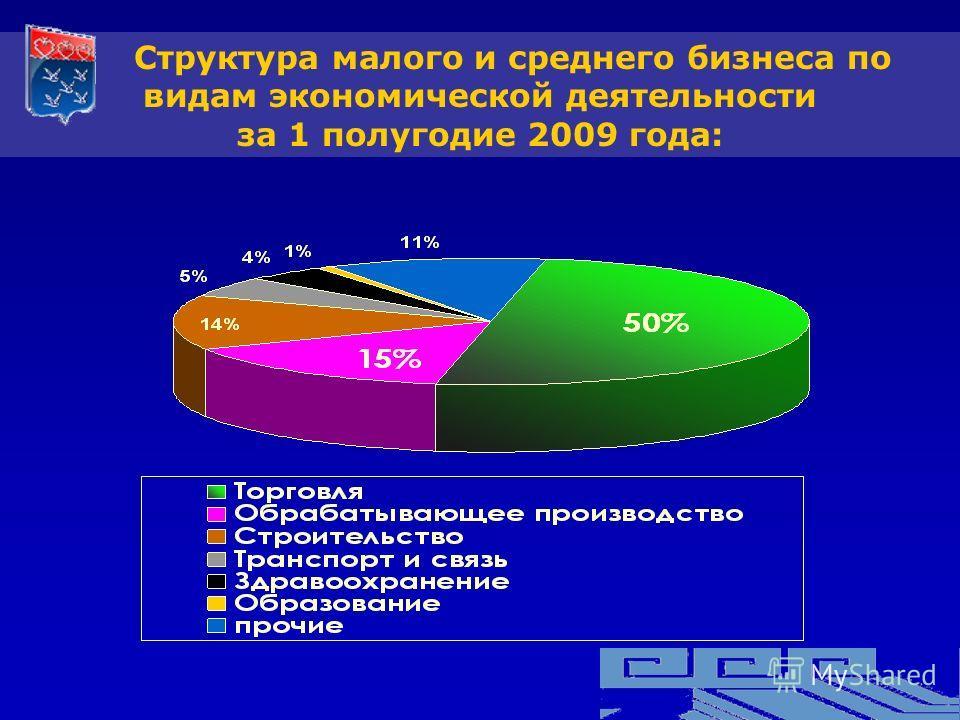 Структура малого и среднего бизнеса по видам экономической деятельности за 1 полугодие 2009 года: