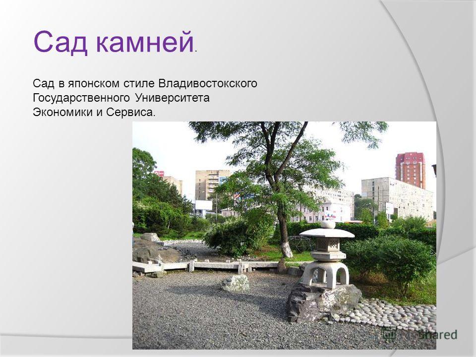 Сад в японском стиле Владивостокского Государственного Университета Экономики и Сервиса. Сад камней.