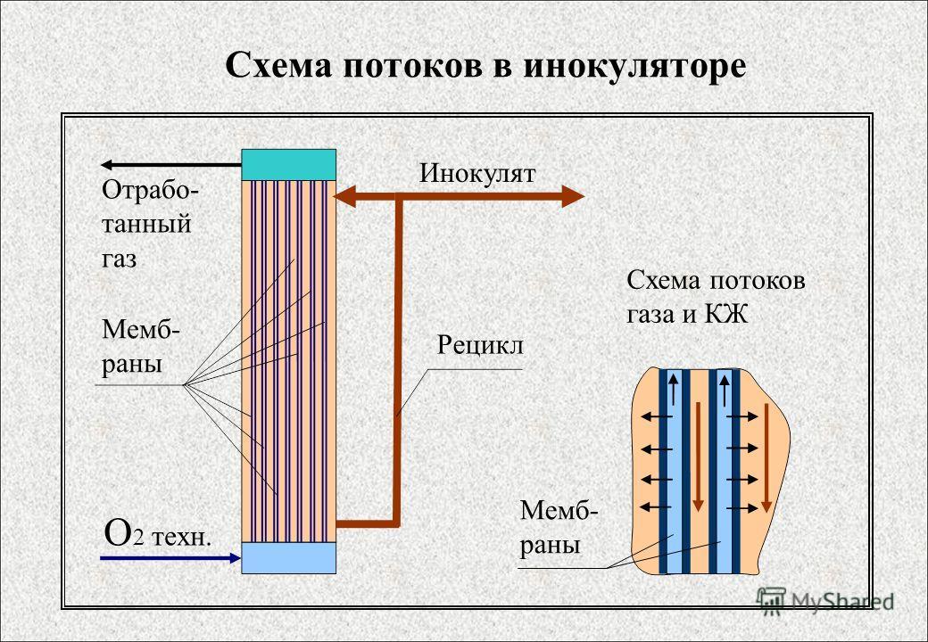 Схема потоков в инокуляторе О 2 техн. Отрабо- танный газ Мемб- раны Рецикл Инокулят Схема потоков газа и КЖ Мемб- раны
