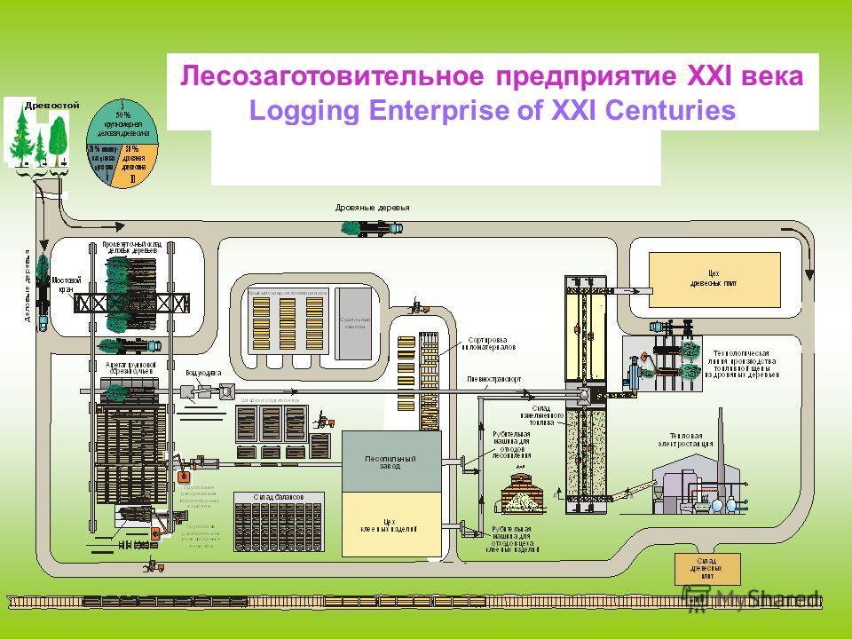 Лесозаготовительное предприятие XXI века Logging Enterprise of XXI Centuries