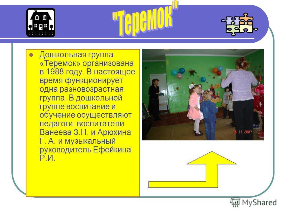 Дошкольная группа «Теремок» организована в 1988 году. В настоящее время функционирует одна разновозрастная группа. В дошкольной группе воспитание и обучение осуществляют педагоги: воспитатели Ванеева З.Н. и Арюхина Г. А. и музыкальный руководитель Еф