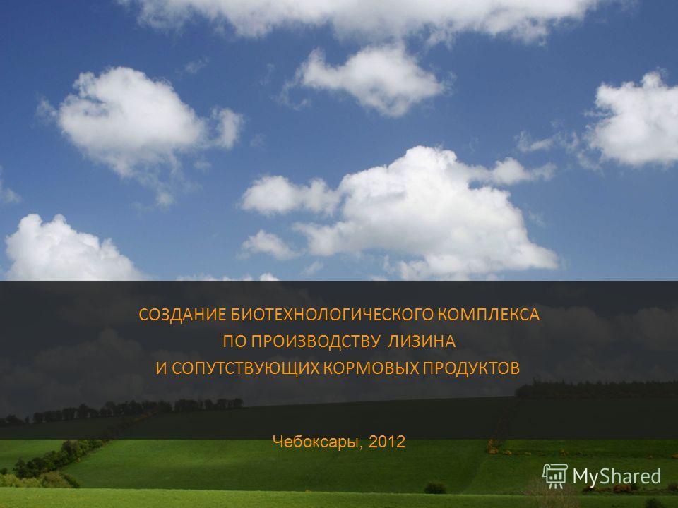 СОЗДАНИЕ БИОТЕХНОЛОГИЧЕСКОГО КОМПЛЕКСА ПО ПРОИЗВОДСТВУ ЛИЗИНА И СОПУТСТВУЮЩИХ КОРМОВЫХ ПРОДУКТОВ Чебоксары, 2012