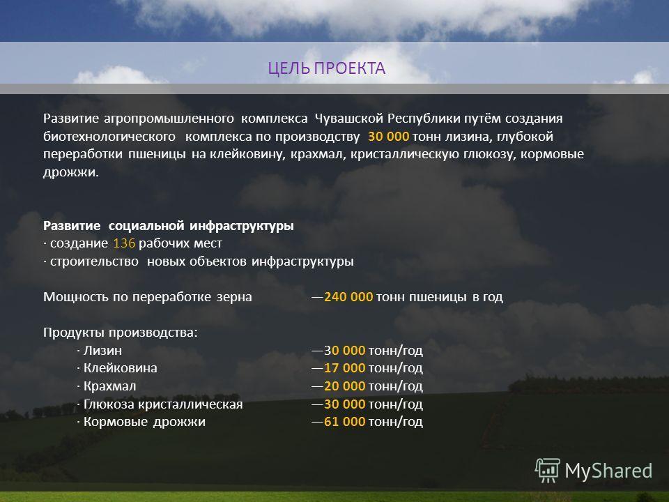 Развитие агропромышленного комплекса Чувашской Республики путём создания биотехнологического комплекса по производству 30 000 тонн лизина, глубокой переработки пшеницы на клейковину, крахмал, кристаллическую глюкозу, кормовые дрожжи. Развитие социаль