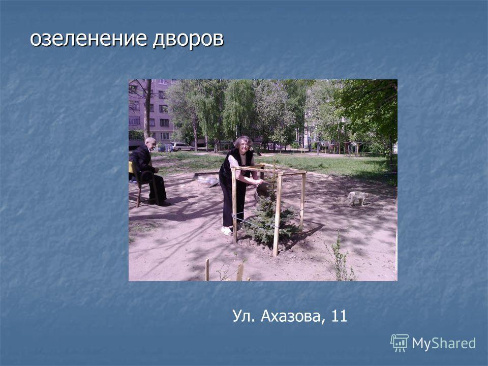 озеленение дворов Ул. Ахазова, 11