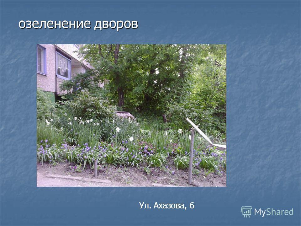 озеленение дворов Ул. Ахазова, 6