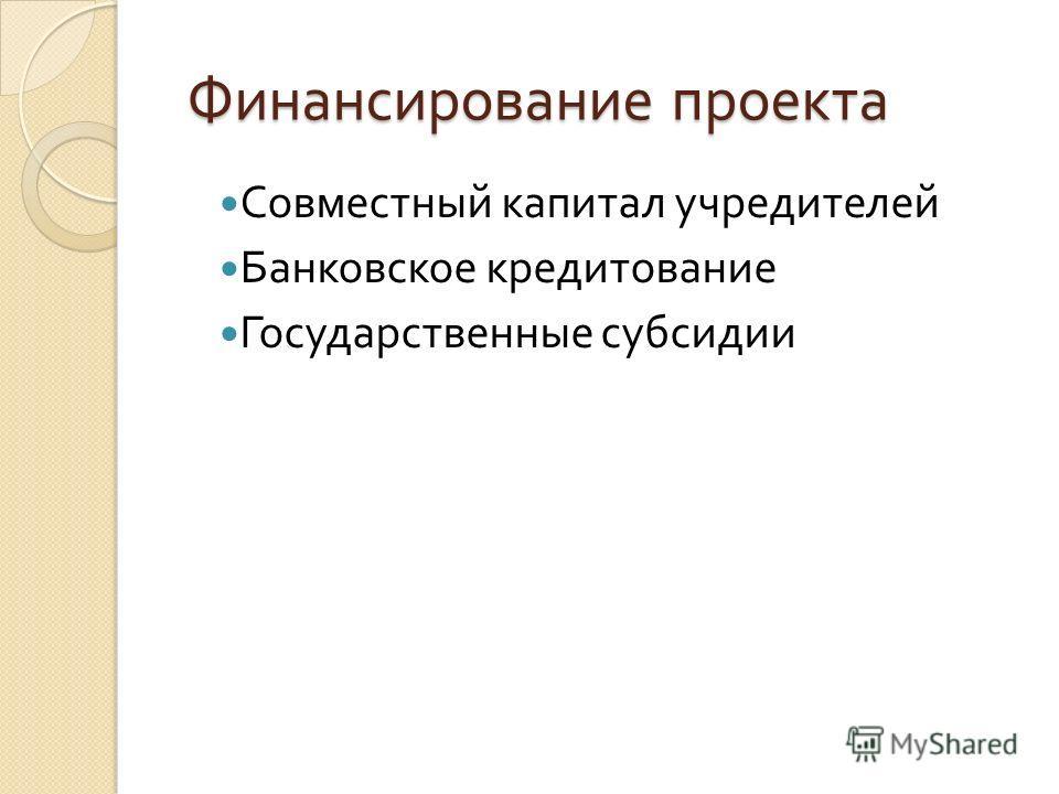 Финансирование проекта Финансирование проекта Совместный капитал учредителей Банковское кредитование Государственные субсидии