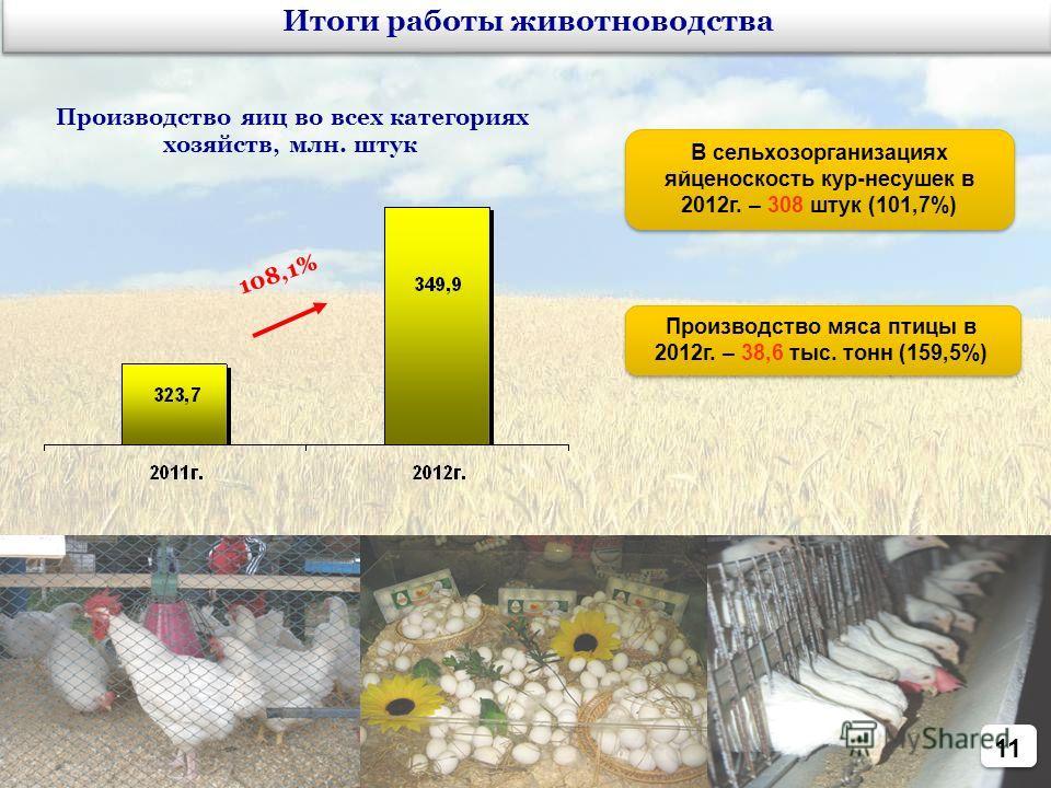 11 108,1% Итоги работы животноводства Производство яиц во всех категориях хозяйств, млн. штук В сельхозорганизациях яйценоскость кур-несушек в 2012г. – 308 штук (101,7%) Производство мяса птицы в 2012г. – 38,6 тыс. тонн (159,5%)