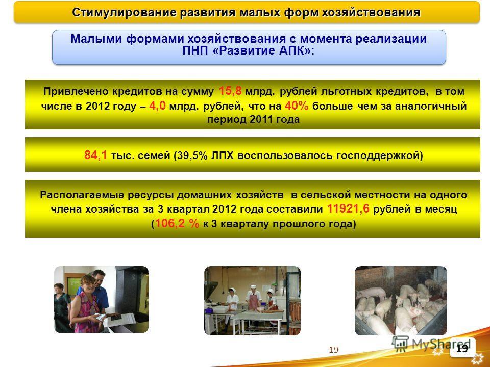 19 Привлечено кредитов на сумму 15,8 млрд. рублей льготных кредитов, в том числе в 2012 году – 4,0 млрд. рублей, что на 40% больше чем за аналогичный период 2011 года 84,1 тыс. семей (39,5% ЛПХ воспользовалось господдержкой) Стимулирование развития м