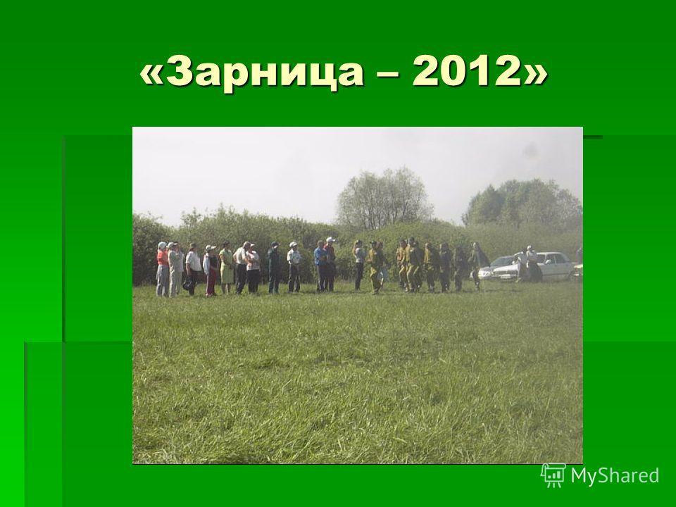 «Зарница – 2012»