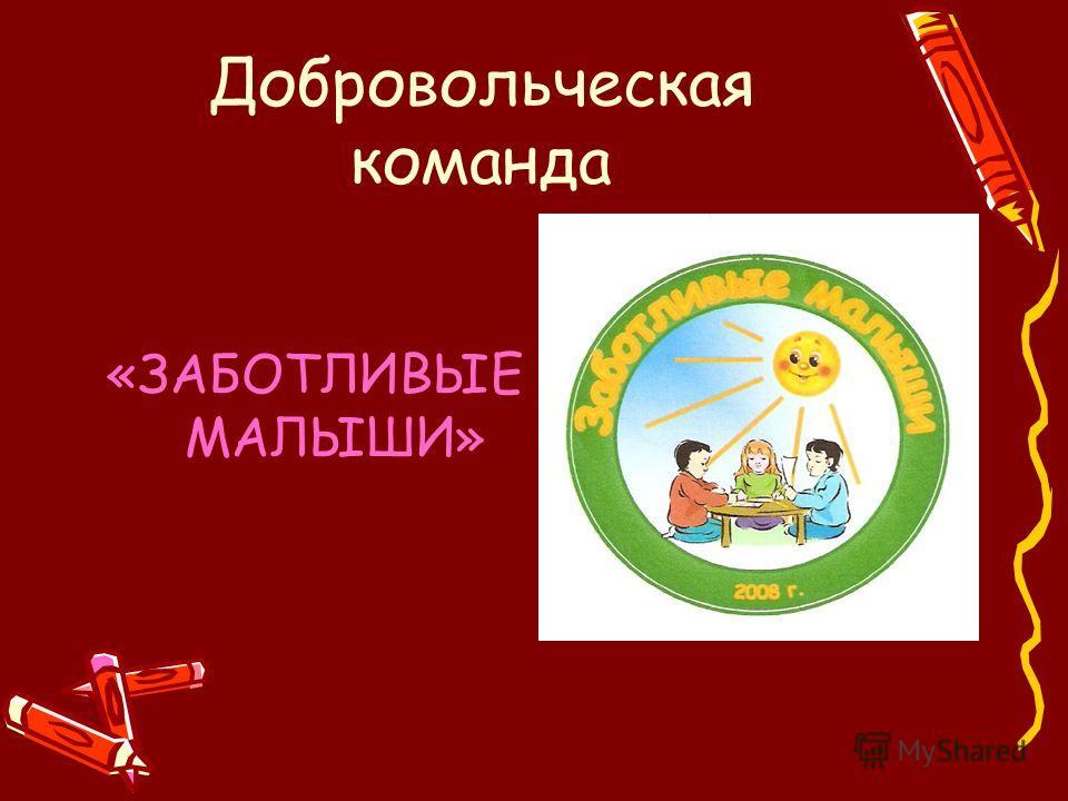 Добровольческая команда «ЗАБОТЛИВЫЕ МАЛЫШИ»