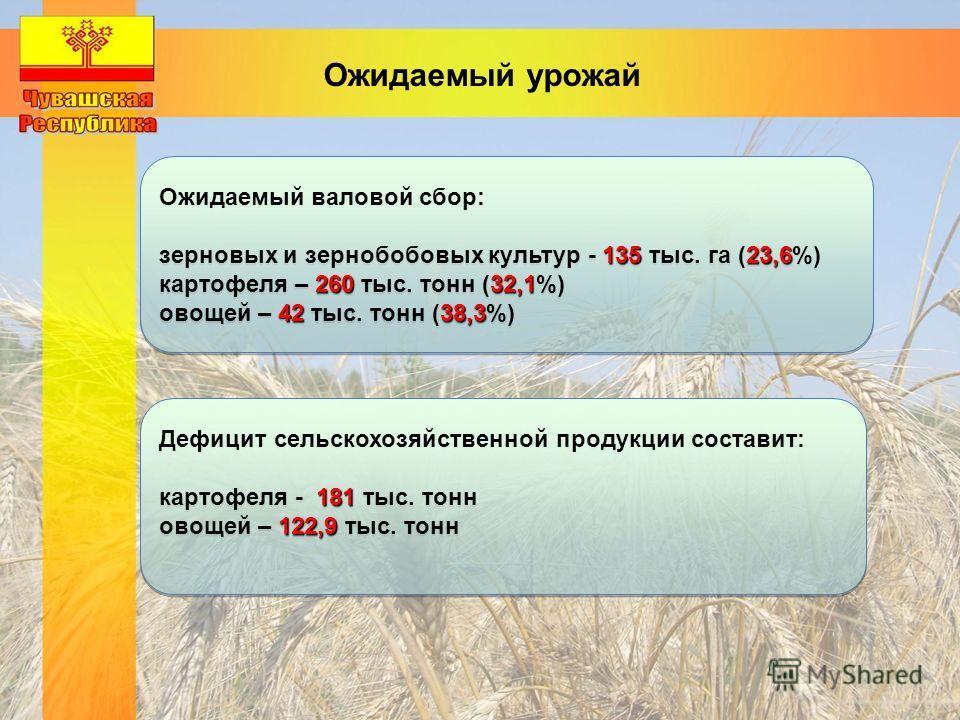 Ожидаемый валовой сбор: 13523,6 зерновых и зернобобовых культур - 135 тыс. га (23,6%) 26032,1 картофеля – 260 тыс. тонн (32,1%) 4238,3 овощей – 42 тыс. тонн (38,3%) Ожидаемый валовой сбор: 13523,6 зерновых и зернобобовых культур - 135 тыс. га (23,6%)