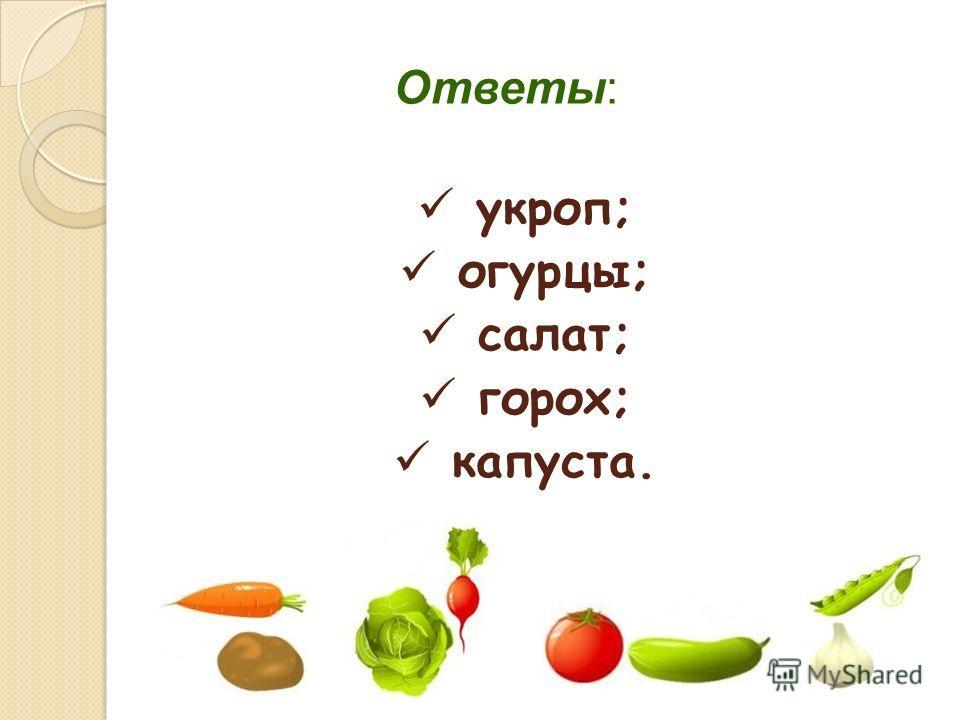 Ответы: укроп; огурцы; салат; горох; капуста.