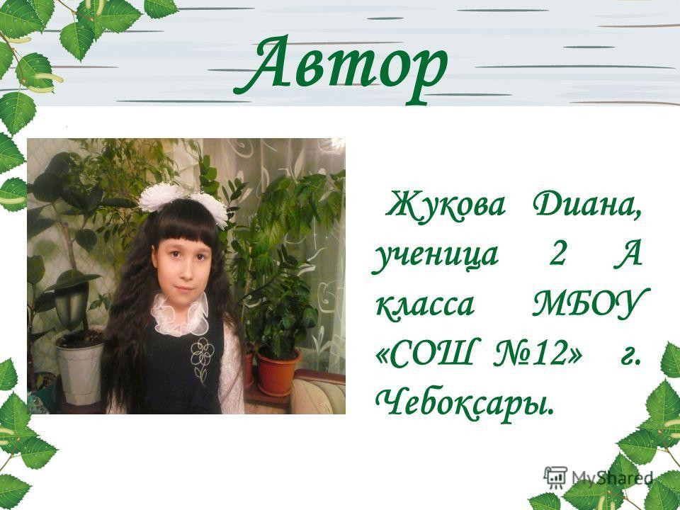 Автор Жукова Диана, ученица 2 А класса МБОУ «СОШ 12» г. Чебоксары.