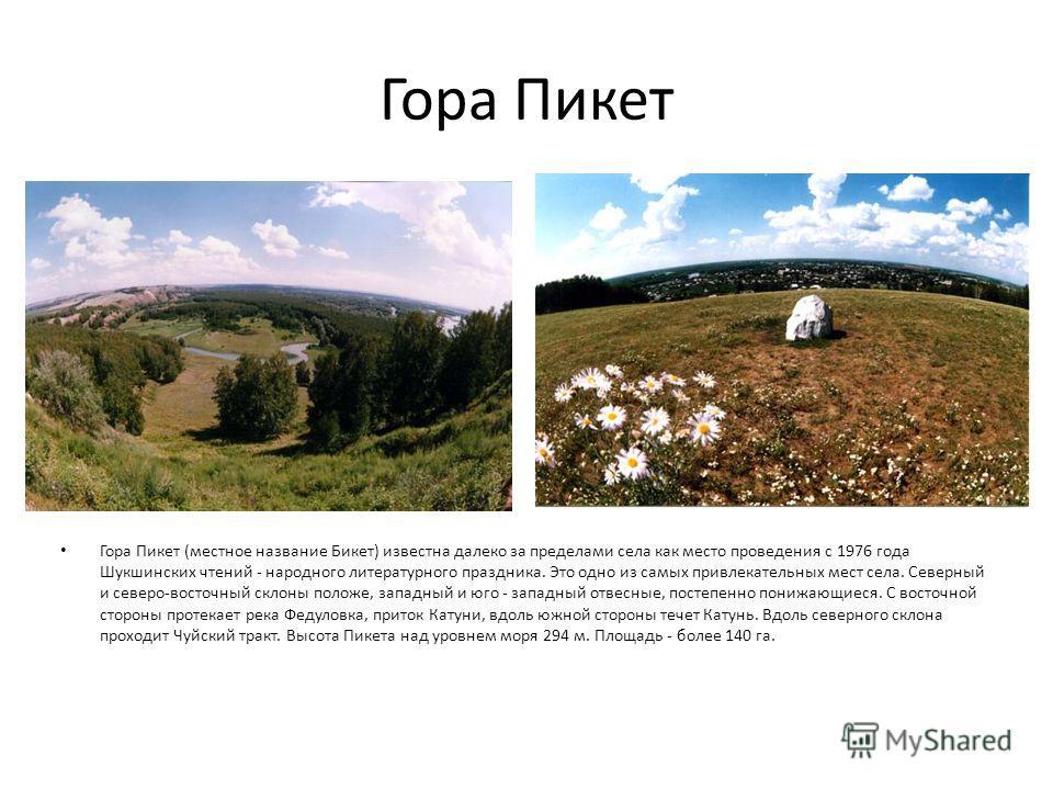Гора Пикет Гора Пикет (местное название Бикет) известна далеко за пределами села как место проведения с 1976 года Шукшинских чтений - народного литературного праздника. Это одно из самых привлекательных мест села. Северный и северо-восточный склоны п