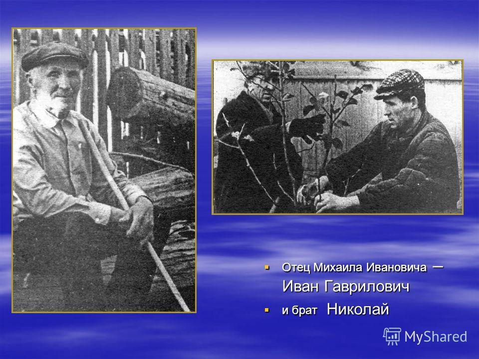 Отец Михаила Ивановича – Иван Гаврилович Отец Михаила Ивановича – Иван Гаврилович и брат Николай и брат Николай