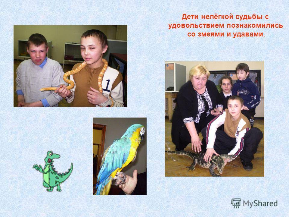 Дети нелёгкой судьбы с удовольствием познакомились со змеями и удавами.