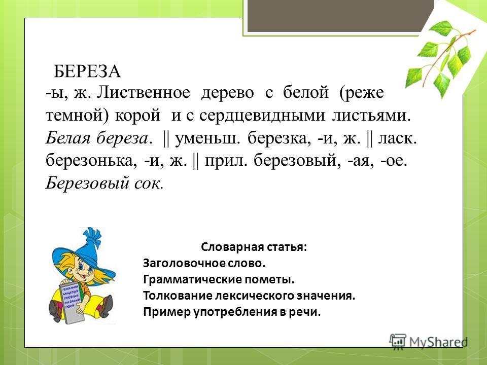 БЕРЕЗА -ы, ж. Лиственное дерево с белой (реже темной) корой и с сердцевидными листьями. Белая береза. || уменьш. березка, -и, ж. || ласк. березонька, -и, ж. || прил. березовый, -ая, -ое. Березовый сок. Словарная статья: Заголовочное слово. Грамматиче
