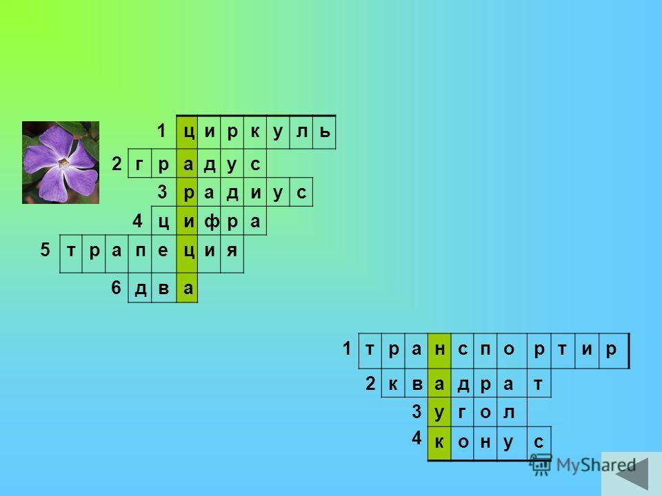 1212 диаметр ломаная 3треугольник 4экзамен 5олимпаада 6знаменатель 7числитель 8число 9куб 1010 биссектриса