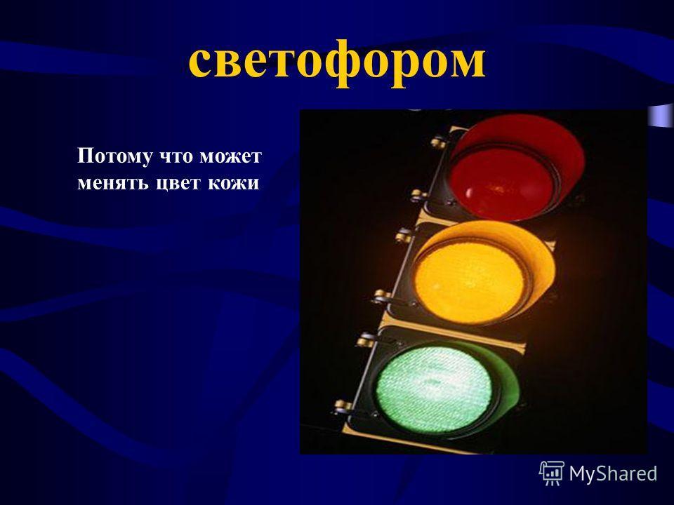 светофором Потому что может менять цвет кожи