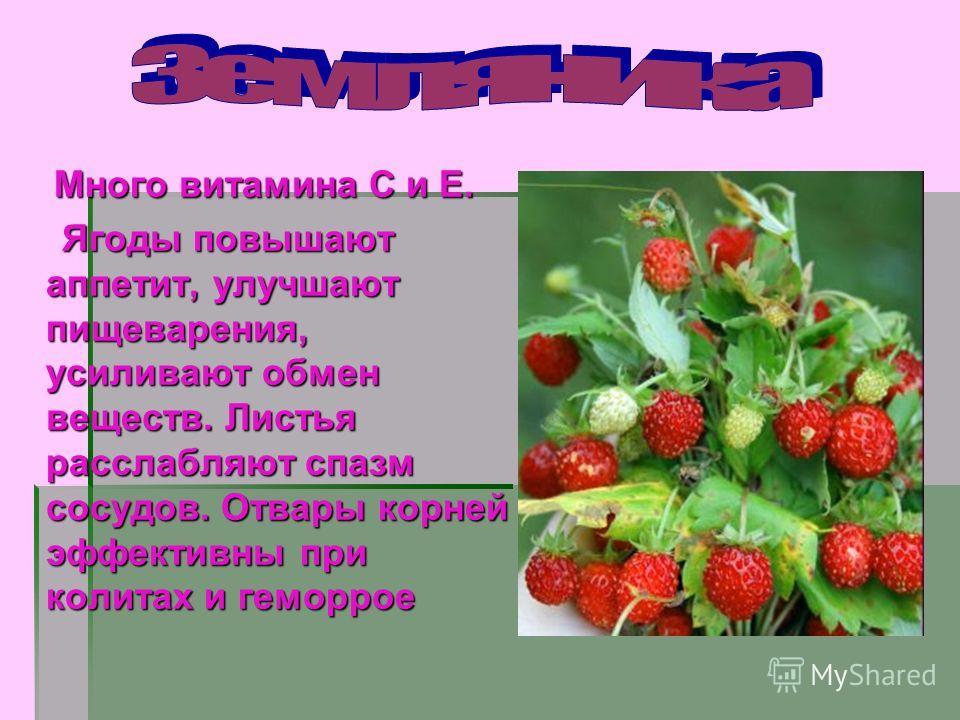 Витамины Р - рутин Витамины Р - рутин Уменьшает проницаемость и ломкость капилляров, участвует в окислительно – восстановительных процессах, обладает антиоксидантным действием. Уменьшает проницаемость и ломкость капилляров, участвует в окислительно –