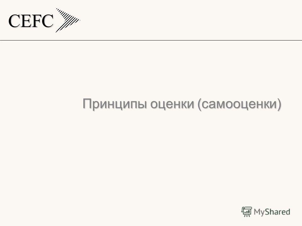 CEFC Принципы оценки (самооценки)